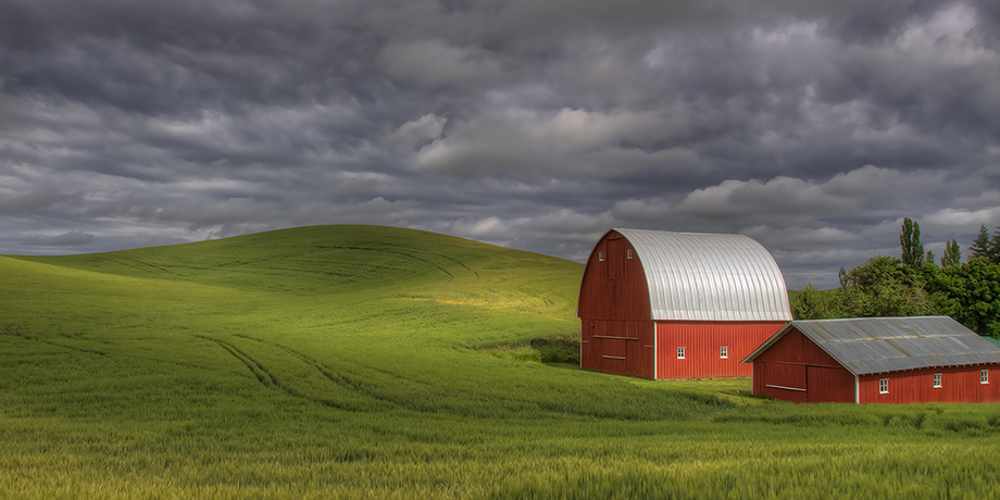Palouse Farmland Natures S Pic S Online